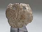 valdivian pre-columbian spondilus shell mask