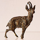 Austrian Bronze Of Goat