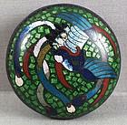 19c Japanese cloisonne tea ceremony KOGO phoenix