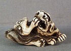 18c Kyoto school SHISHI biting its foot
