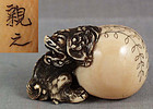 19c netsuke SHISHI with ball by CHIKAYUKI