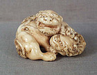 18c netsuke SHISHI with cub
