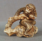 19c netsuke MONKEY on pine ex Royal Collection