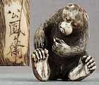 19c netsuke MONKEY picking fleas by KOHOSAI