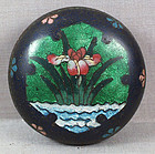 19c Japanese cloisonne tea ceremony KOGO IRIS