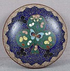 19c JAPANESE CLOISONNE tea ceremony KOGO clover leaf