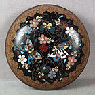 19c JAPANESE CLOISONNE tea ceremony KOGO butterflies