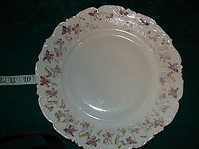 Tressemann & Vogt China dinner plates