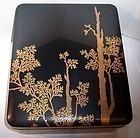 Antique Edo Meiji Japanese Maki-e Zeshin Style Lacquer Box & Tray