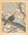 Ohno Bakufu 6 Woodblock Prints - Birds/Flowers