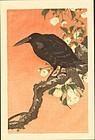 Ohara Koson Japanese Woodblock Print - Crow Cherry
