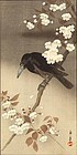 Imao Keinen Japanese Woodblock Print - Crow and Flowering Cherry
