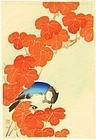 Ito Sozan Japanese Woodblock Print - Blue Bird and Autumn Leaves