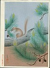 Ohno Bakufu Japanese Woodblock Print - Squirrel in a Pine Tree