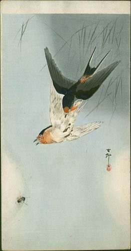 Ohara Koson Japanese Woodblock Print - Two Barn Swallows in Flight