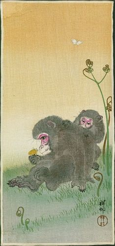 Ohara Koson (Shoson) Japanese Woodblock Print - Two Monkeys