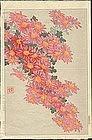 Shodo Kawarazaki - Woodblock Print - Chrysanthemums