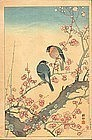 Ohara Koson 1931 Woodblock Print - Bullfinches 1st ed. SOLD