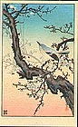 Tsuchiya Koitsu - Woodblock Print - Plum Nightingale