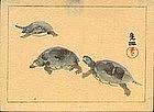 Ogata Korin Japanese Woodblock Print  - Turtles SOLD
