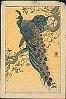 Ohara Shoson (Koson) Mini Woodblock Print - Peacocks