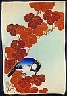 Ito Sozan Rare Japanese Woodblock Print - Blue Bird