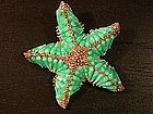 HAR STARFISH BROOCH