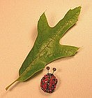 DOROTHY BAUER LADY BUG PIN