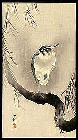 Rare Koson Woodblock - Northern Lapwing