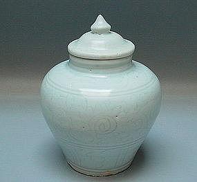 A Ming Dynasty White Glaze Jar