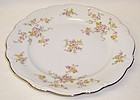 JoHann Haviland Bavaria Germany MICHELE 10 Inch DINNER PLATE