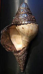 Rare right-turning conch shell or shankha