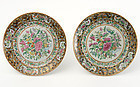 Pair of Large Chinese Butterfly Porcelain Plates.