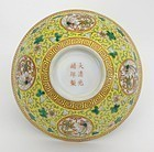Republic Period Chinese Yellow Ground Medallion Porcelain Bowl.