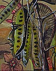 Castora, Latin American, Apache Power