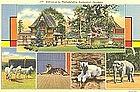 Postcard, Philadelphia Zoological Garden