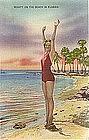 Beauty on the Beach Florida, Postcard