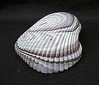 English slag glass shell, Victorian