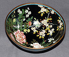 Unique Old Japanese Cloisonne Enamel Bowl -with birds and more