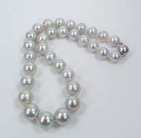 Large 14k gold genuine South Sea pearl bead necklace