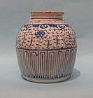 Qing Dynasty Blue White Porcelain Lidded Ginger Jar