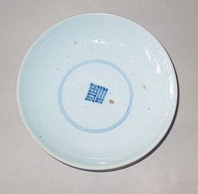 A Pure White Glazed Blue and White Porcelain Dish