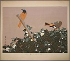 Fine and Rare Woodblock Print by Tsuchiya Rakuzan
