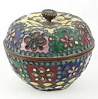 Rare Japanese Twisted Wire Cloisonne Box, 19th C