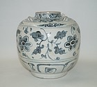 Rare Vietnamese Annamese blue and white large jar