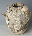 Sukothai Shipwreck Jar 14th/15th Century