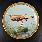 Lovely Antique Royal Crown Derby Cabinet Plate