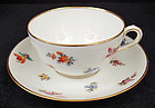 Lovely Antique Lamm Dresden Tea Cup & Saucer
