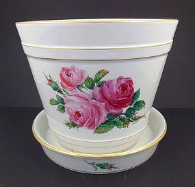 Antique Meissen Moss Rose Flower Pot & Under Plate