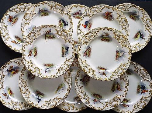 12 Antique Copeland�s for Tiffany Ornithological Plates